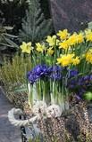 Grabgestaltung im Frühling