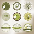 vintage eco badges
