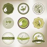 vintage eco badges