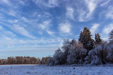 Blauer Himmel - Winter im Harz