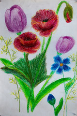 Flowers, pencil painting