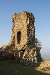 Ruins of Lichnice Castle, Czech Republic