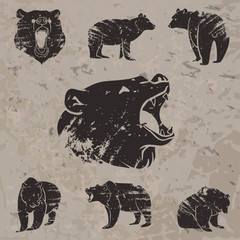 Set of different bears 3
