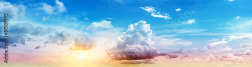 Art summer background - 81509995