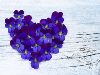 heart made of wild violets