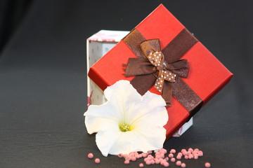 caja de sorpresa