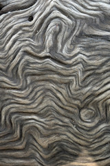 Maserung im Holz