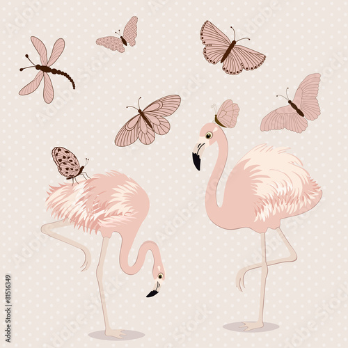 Cute pink flamingos and butterflies - 81516349