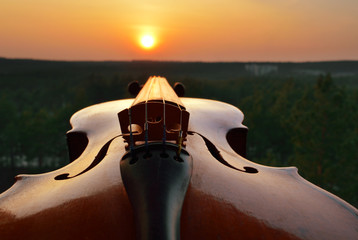 Old violin at sunset.