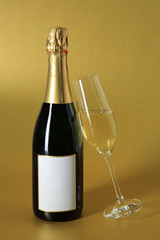 bottle and glass of bubbling champagne