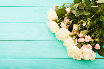 White and pink roses on blue wooden background. Top view