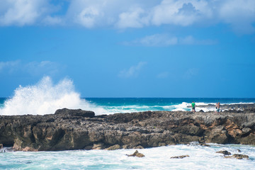 Large surf on Oahu's north shore at Haleiwa, Hawaii