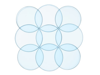 petri dishes,segments on white background
