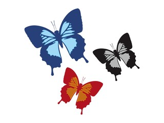 Vector Butterfly - Icon