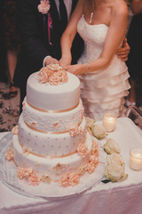 A bride and a groom is cutting their wedding cake.