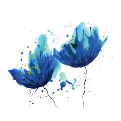 Watercolor cornflower