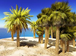 Lush oasis landscape on desert
