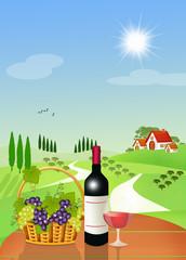 vineyards of black grapes