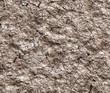 ������, ������: dry cracked wilderness texture