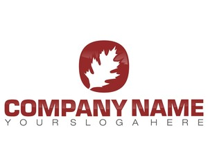 leaf dried leaves red circle logo image vector