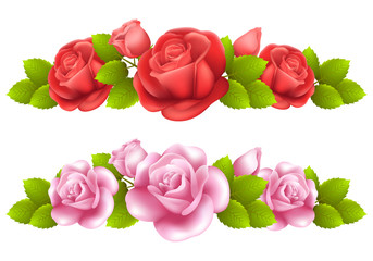 Vector background with colored roses.