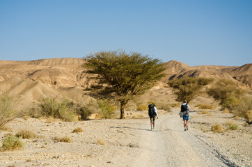 Two hikers from Europe walking in Negev Desert