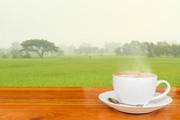 Coffee and Rice field.