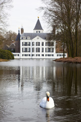 White swan with castle of Renswoude, The Netherlands