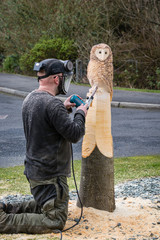 Owl sculptor working
