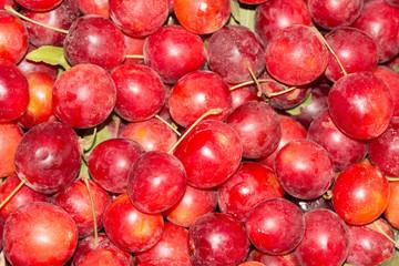 cherry plum fruit as background