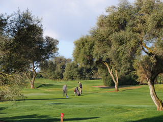 Golf Course With Golfers