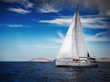 The white sails of yachts on the background of sea - 81557168