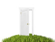 Open door to new world, grass carpet. On white background.