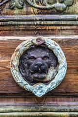 Old door with lion door knocker.