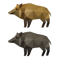 Abstract polygonal geometric triangle wild boar set isolated