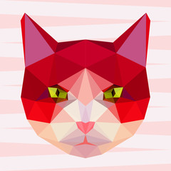 Abstract polygonal geometric bright cat portrait for design