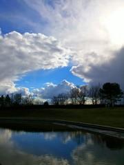 Wasserspiegelungen im Teich