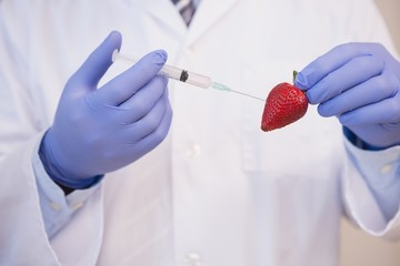 Scientist injecting strawberry