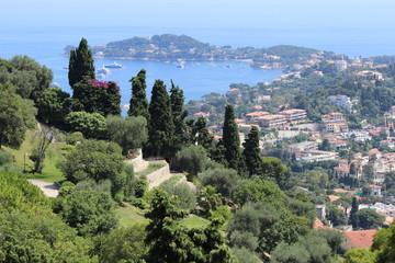 Зелень побережья Ниццы