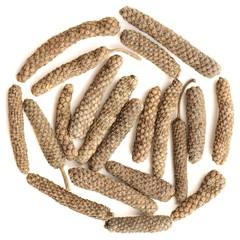 Indian long pepper, Piper longum  in round shape isolated
