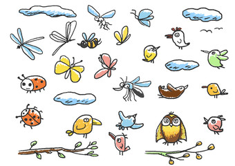 Set of birds, insects