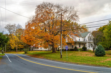 Rural New Jersey Road