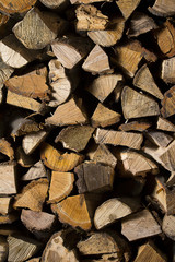 firewood / Dry firewood in a pile for furnace kindling