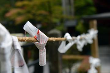 Ema Pray Note at Toshogu Temple Nikko Japan