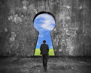 Businessman walking toward keyhole door with sky clouds grass vi