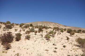 Sand dunes and mountains near Sotavento beach on Jandia peninsul