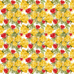 Floral colorful roses flowers pattern on white background