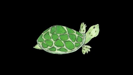 2D cartoon tortoise walking loop alpha