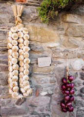 red onions and garlic string over country wall