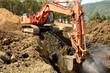 Bad Dirt - 81578967